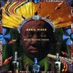 Bahia Black - The Seven Powers