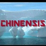 Chinensis - One Starry Night