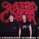 Splattered Cadaver - Dismembered For Pleasure